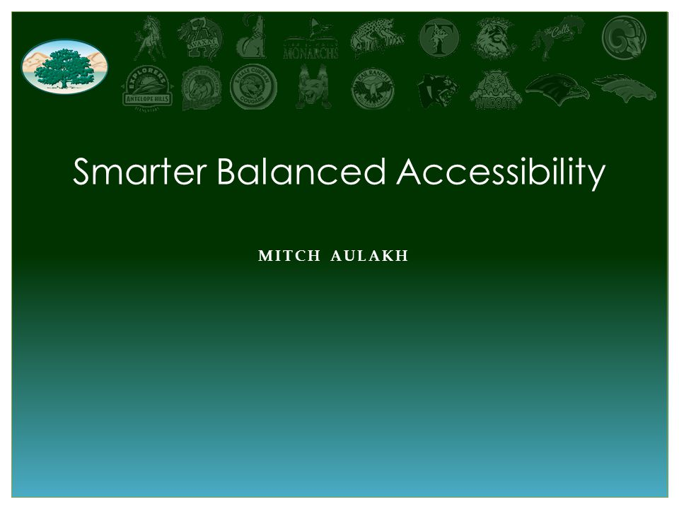 MITCH AULAKH Smarter Balanced Accessibility