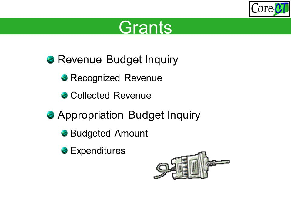 Grants Revenue Budget Inquiry Recognized Revenue Collected Revenue Appropriation Budget Inquiry Budgeted Amount Expenditures