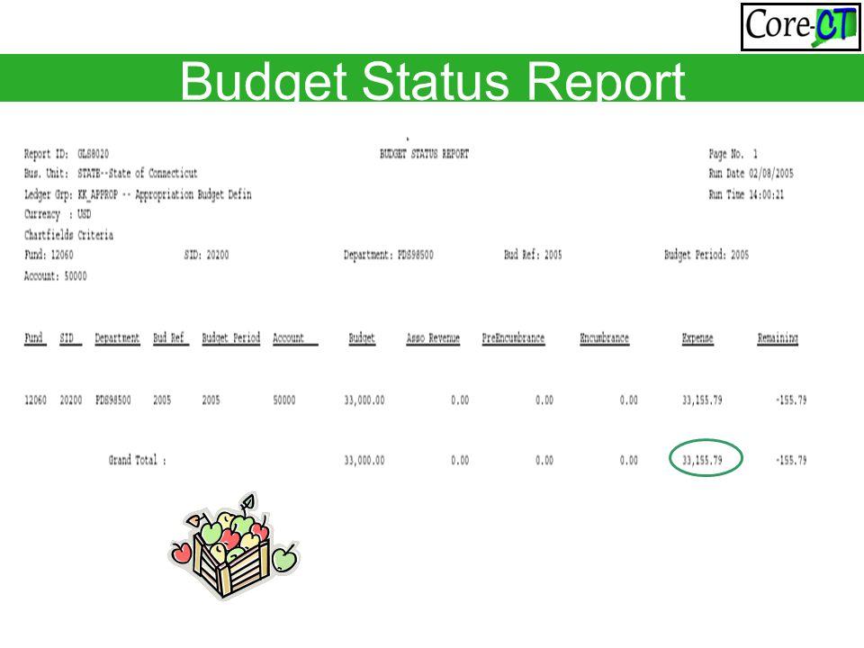 Budget Status Report