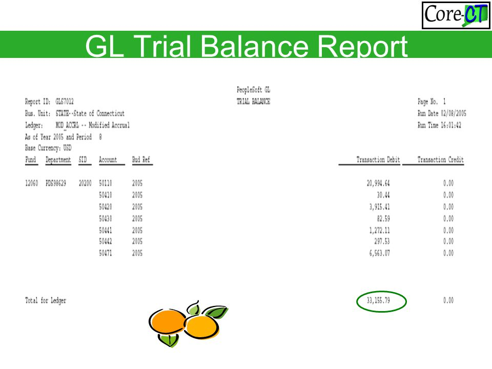 GL Trial Balance Report