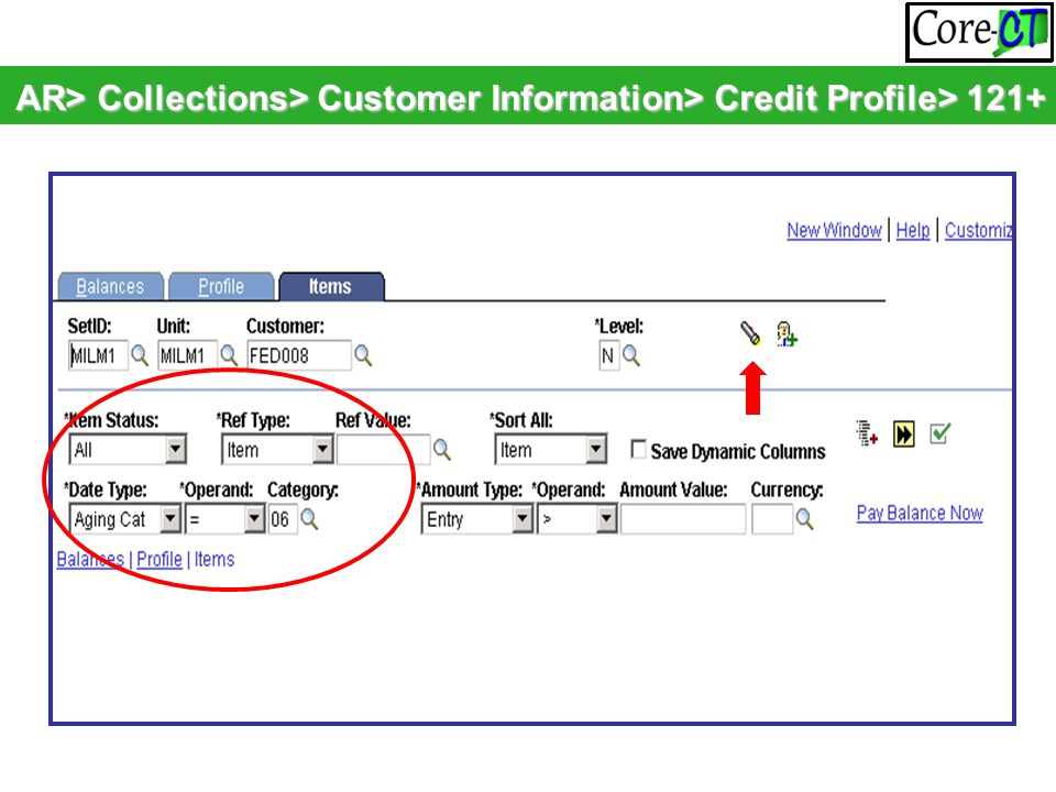 AR> Collections> Customer Information> Credit Profile> 121+