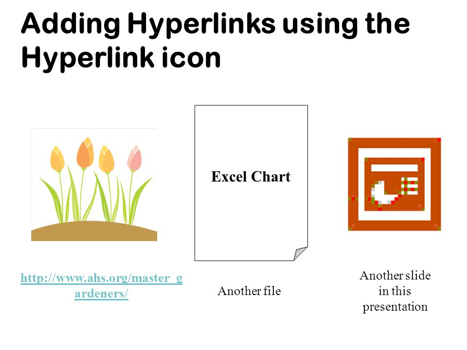 Adding Hyperlinks using the Hyperlink icon URL http://www.ahs.org/master_g ardeners/ Another file Another slide in this presentation Excel Chart
