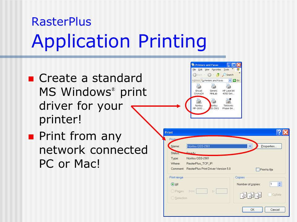 RasterPlus Application Printing Create a standard MS Windows ® print driver for your printer.