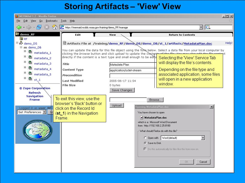 Storing Artifacts – View View Selecting the View Service Tab will display the file's contents.
