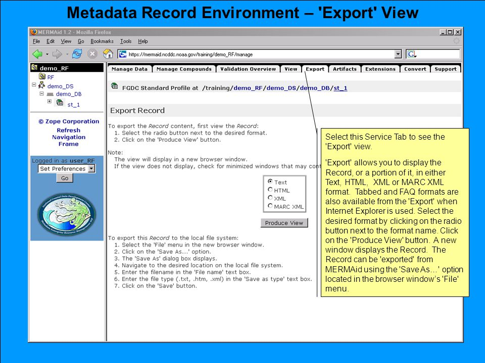 Metadata Record Environment – Export View Select this Service Tab to see the Export view.