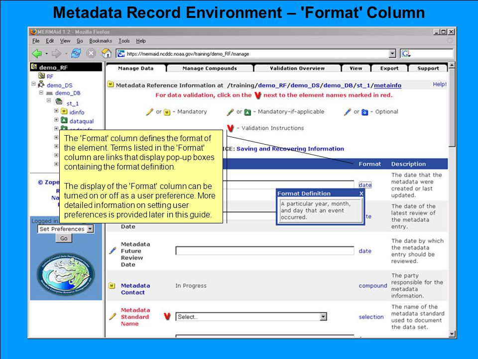 Metadata Record Environment – Format Column The Format column defines the format of the element.