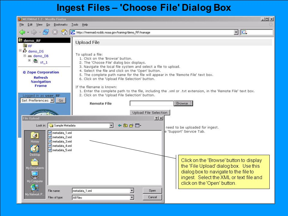 Ingest Files – Choose File Dialog Box Click on the Browse button to display the File Upload dialog box.