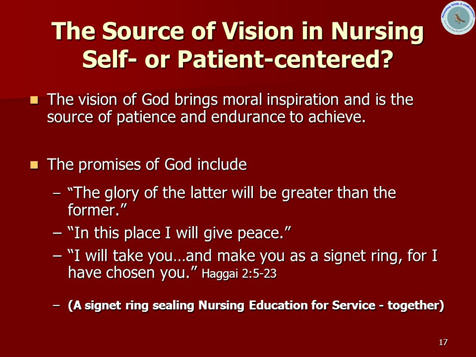 17 The Source of Vision in Nursing Self- or Patient-centered.