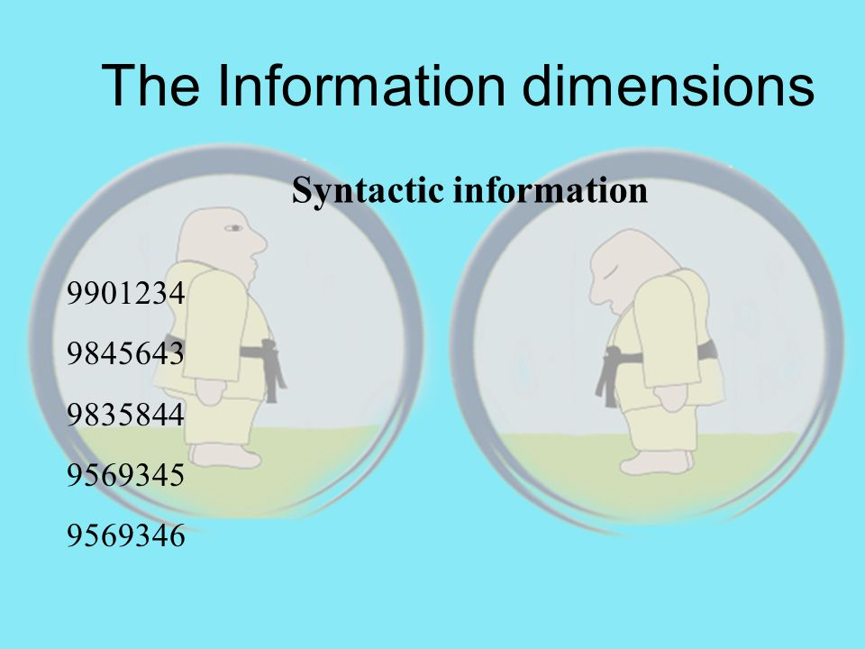 Syntactic information The Information dimensions 9901234 9845643 9835844 9569345 9569346