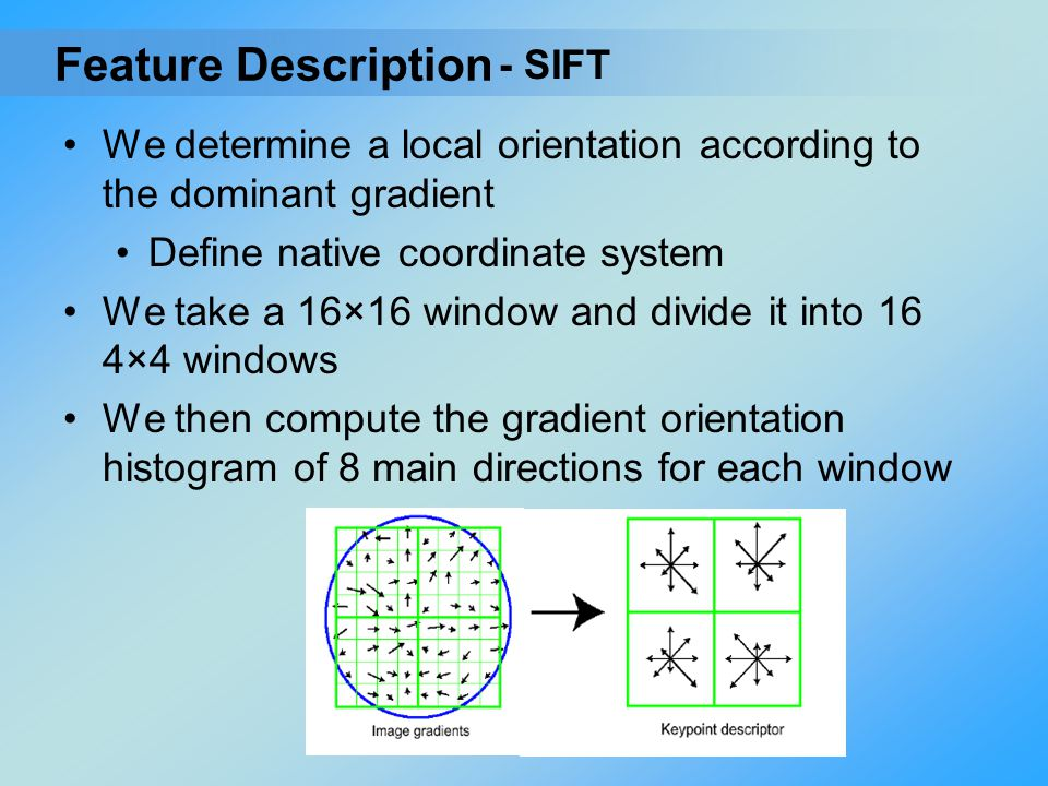 We determine a local orientation according to the dominant gradient Define native coordinate system We take a 16×16 window and divide it into 16 4×4 w