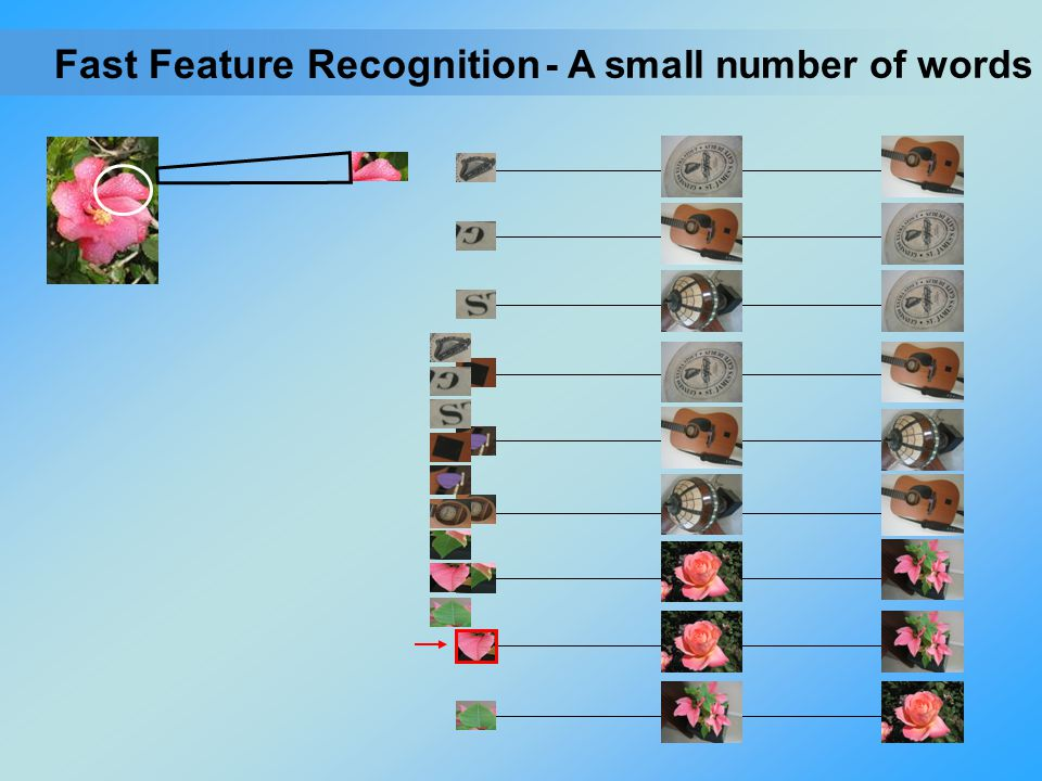 - A small number of words Fast Feature Recognition
