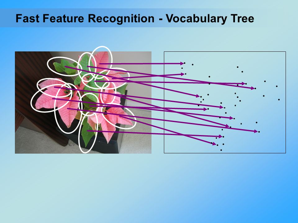 - Vocabulary TreeFast Feature Recognition