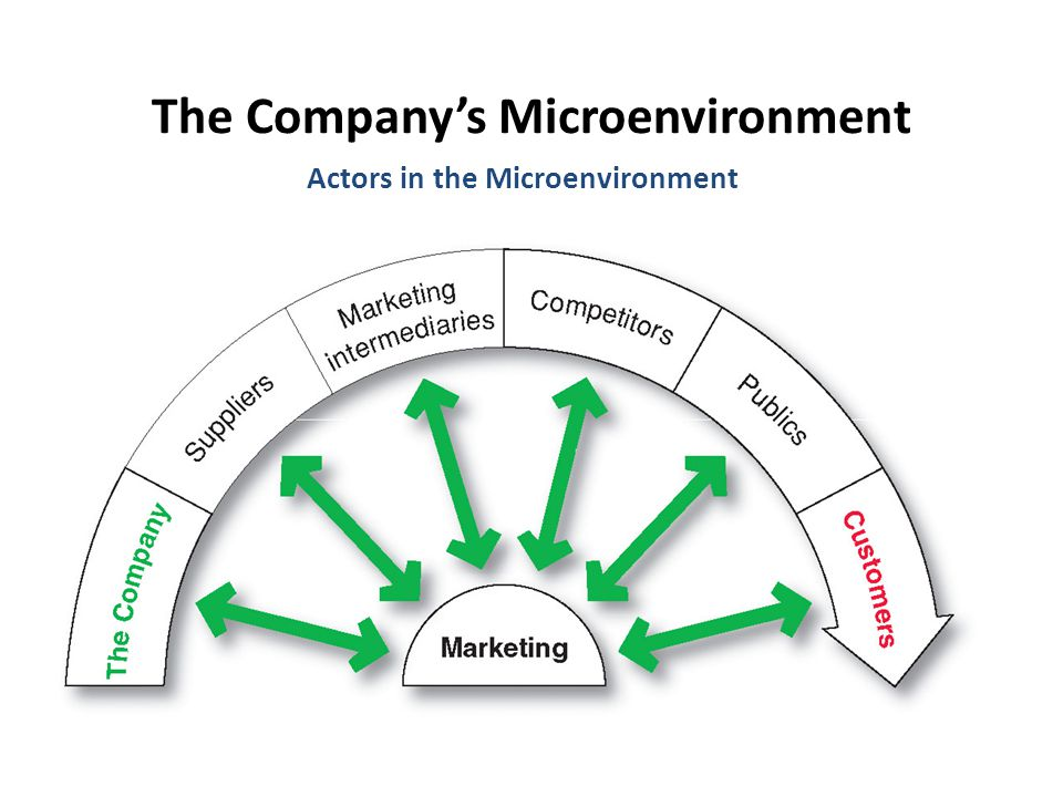 The Company's Microenvironment Actors in the Microenvironment