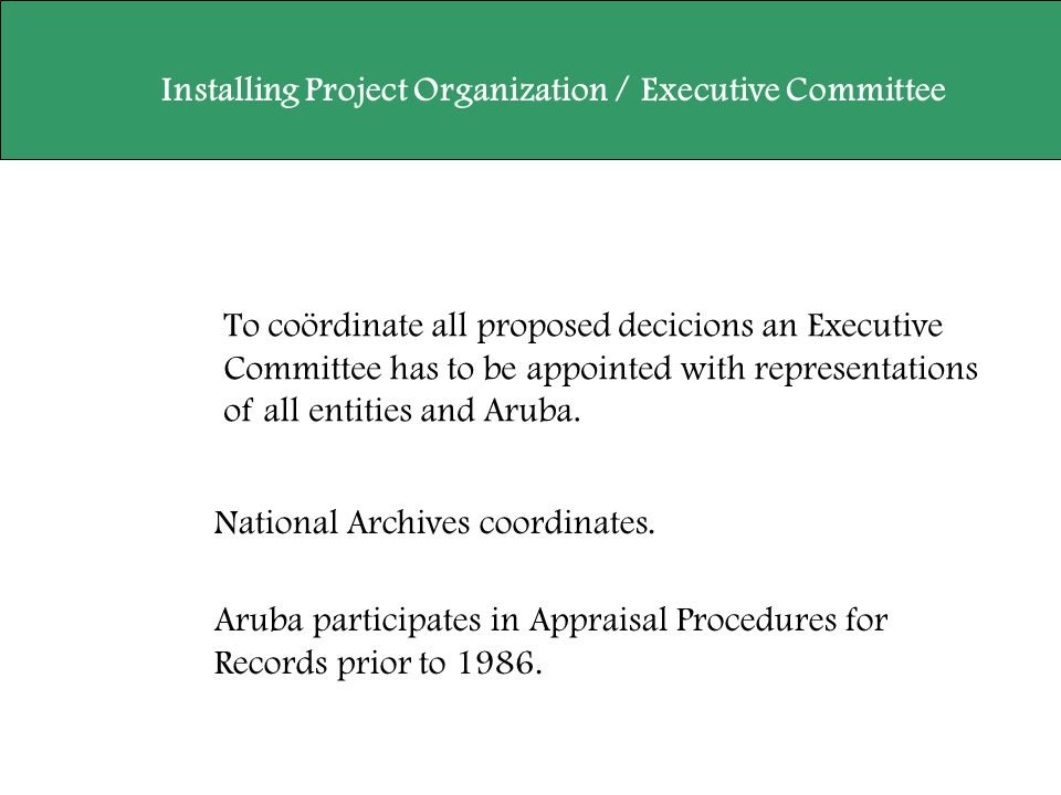 To coördinate all proposed decicions an Executive Committee has to be appointed with representations of all entities and Aruba. Installing Project Org