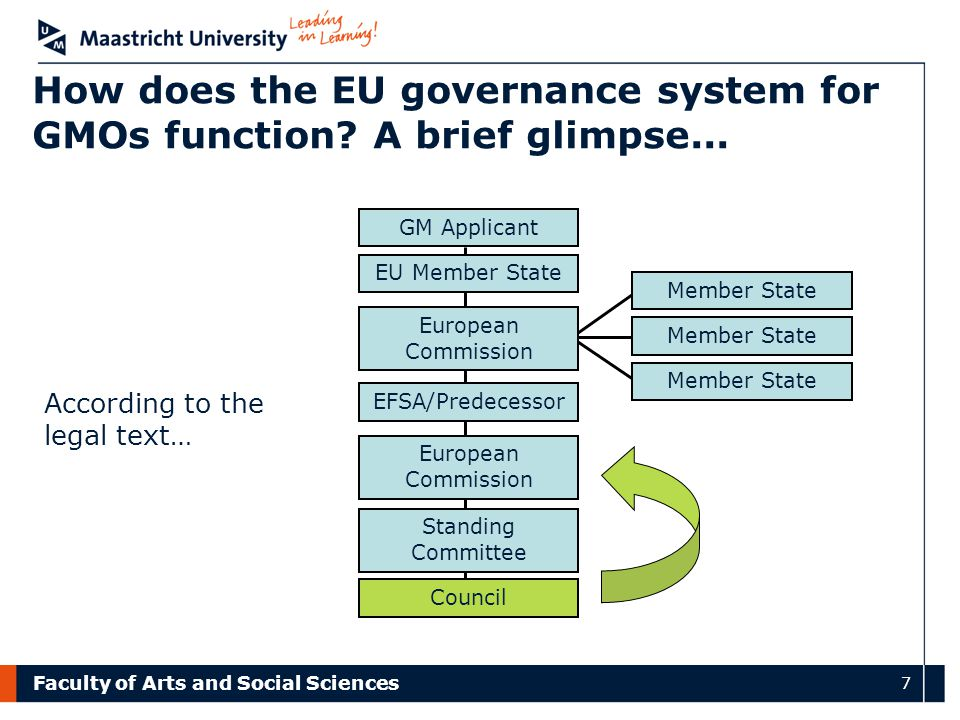 Faculty of Arts and Social Sciences 7 How does the EU governance system for GMOs function? A brief glimpse... European Commission EU Member State GM A