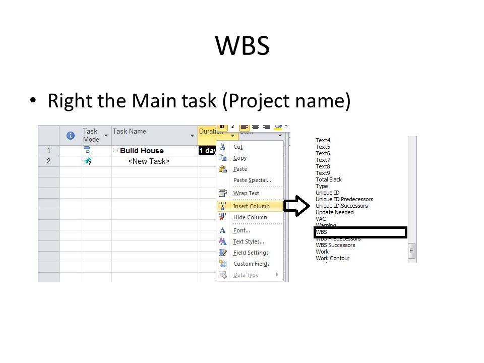 WBS Right the Main task (Project name)