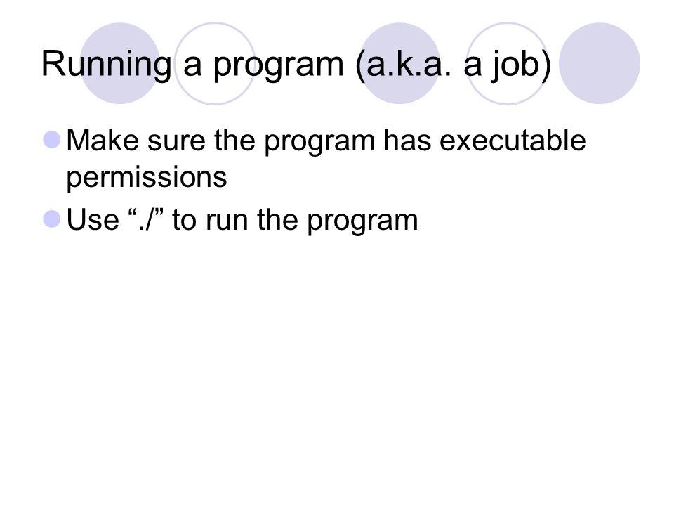 Running a program (a.k.a.