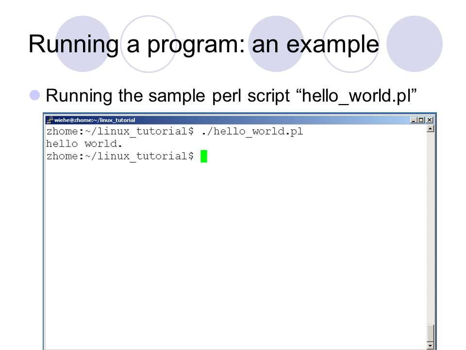 Running a program: an example Running the sample perl script hello_world.pl
