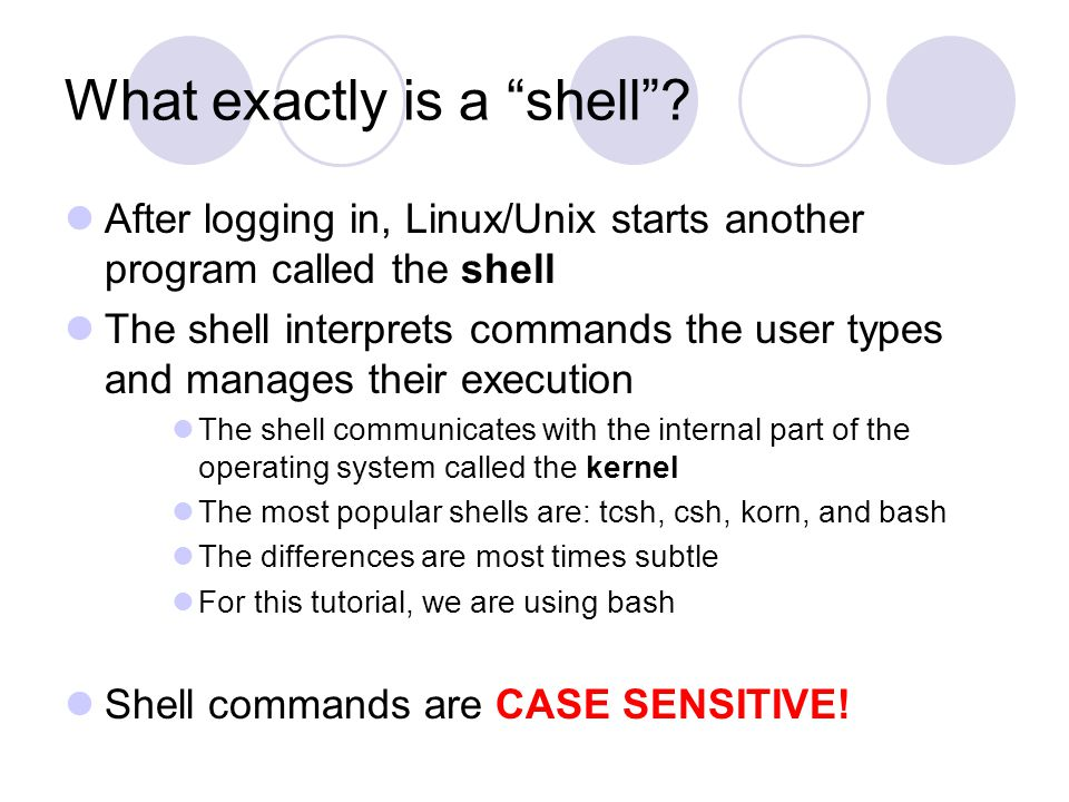 What exactly is a shell .