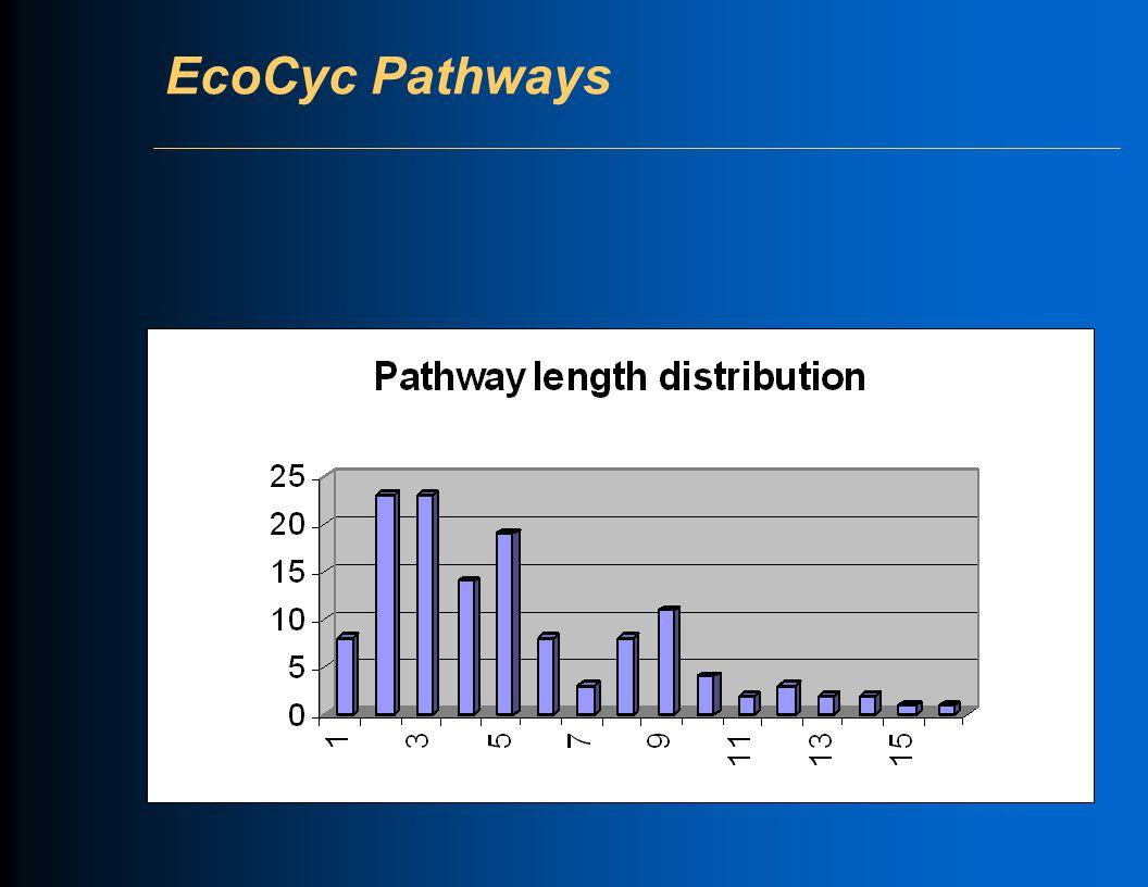 EcoCyc Pathways