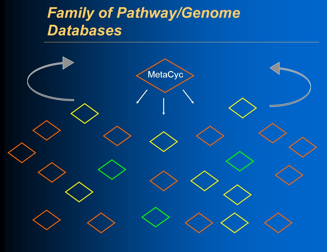 Family of Pathway/Genome Databases MetaCyc