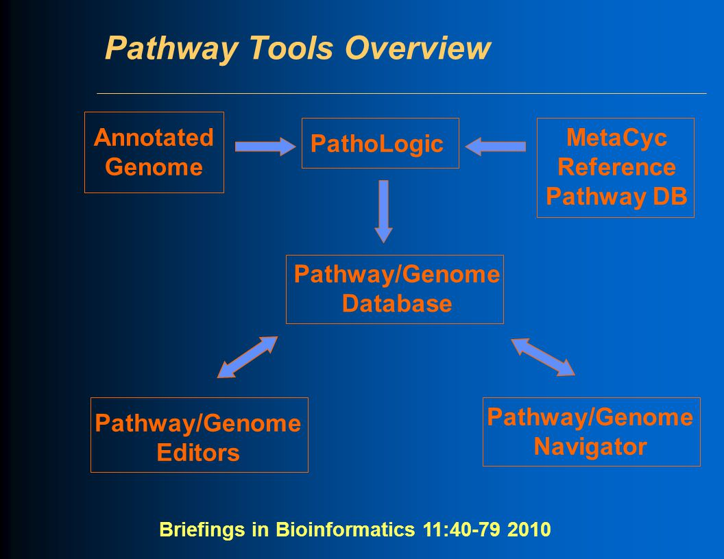 Pathway Tools Overview Pathway/Genome Editors Pathway/Genome Database PathoLogic Annotated Genome MetaCyc Reference Pathway DB Pathway/Genome Navigato