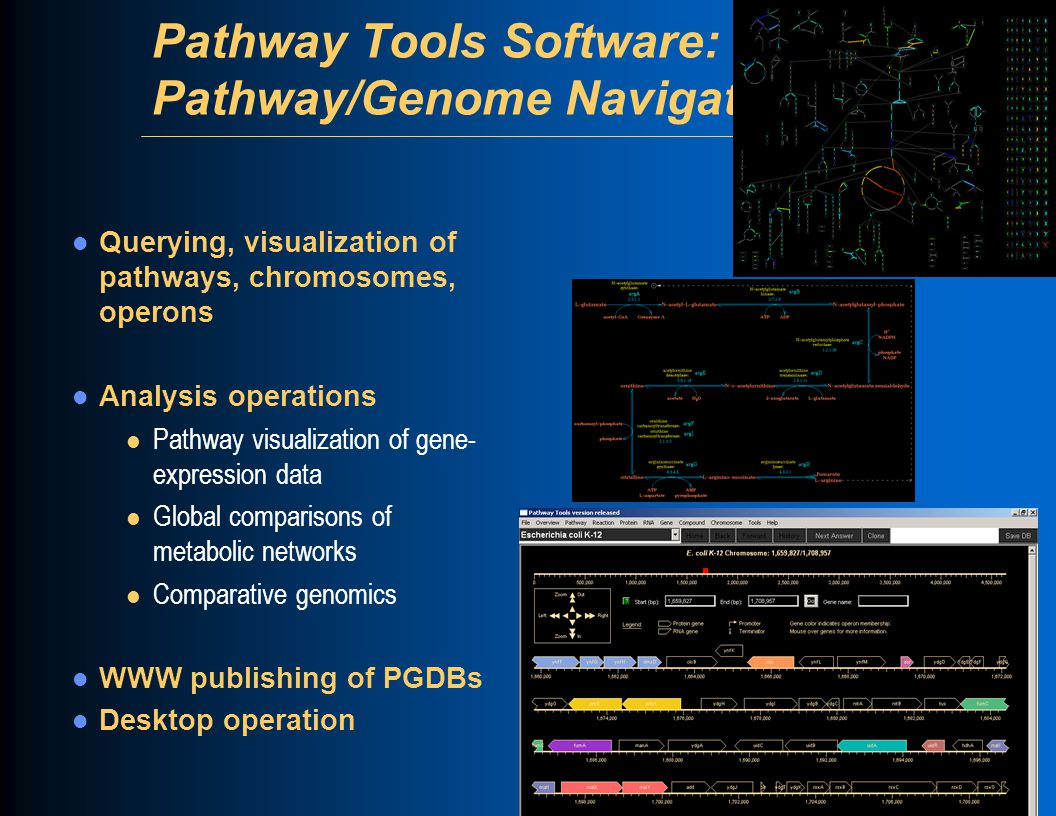 Pathway Tools Software: Pathway/Genome Navigator Querying, visualization of pathways, chromosomes, operons Analysis operations l Pathway visualization