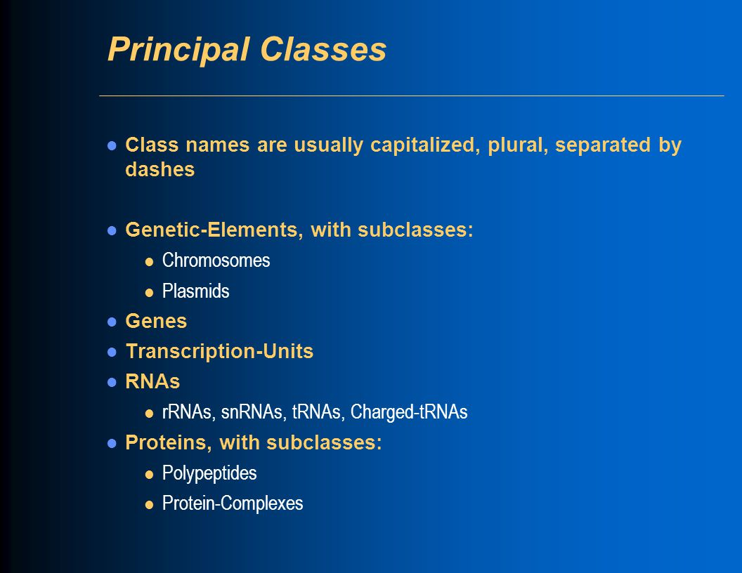 Principal Classes Class names are usually capitalized, plural, separated by dashes Genetic-Elements, with subclasses: l Chromosomes l Plasmids Genes Transcription-Units RNAs l rRNAs, snRNAs, tRNAs, Charged-tRNAs Proteins, with subclasses: l Polypeptides l Protein-Complexes