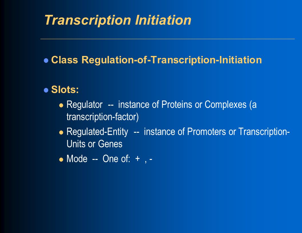 Transcription Initiation Class Regulation-of-Transcription-Initiation Slots: l Regulator -- instance of Proteins or Complexes (a transcription-factor)