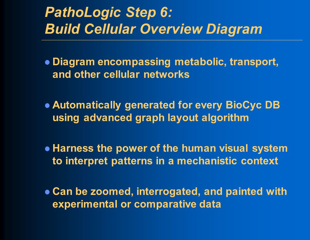 PathoLogic Step 6: Build Cellular Overview Diagram Diagram encompassing metabolic, transport, and other cellular networks Automatically generated for every BioCyc DB using advanced graph layout algorithm Harness the power of the human visual system to interpret patterns in a mechanistic context Can be zoomed, interrogated, and painted with experimental or comparative data