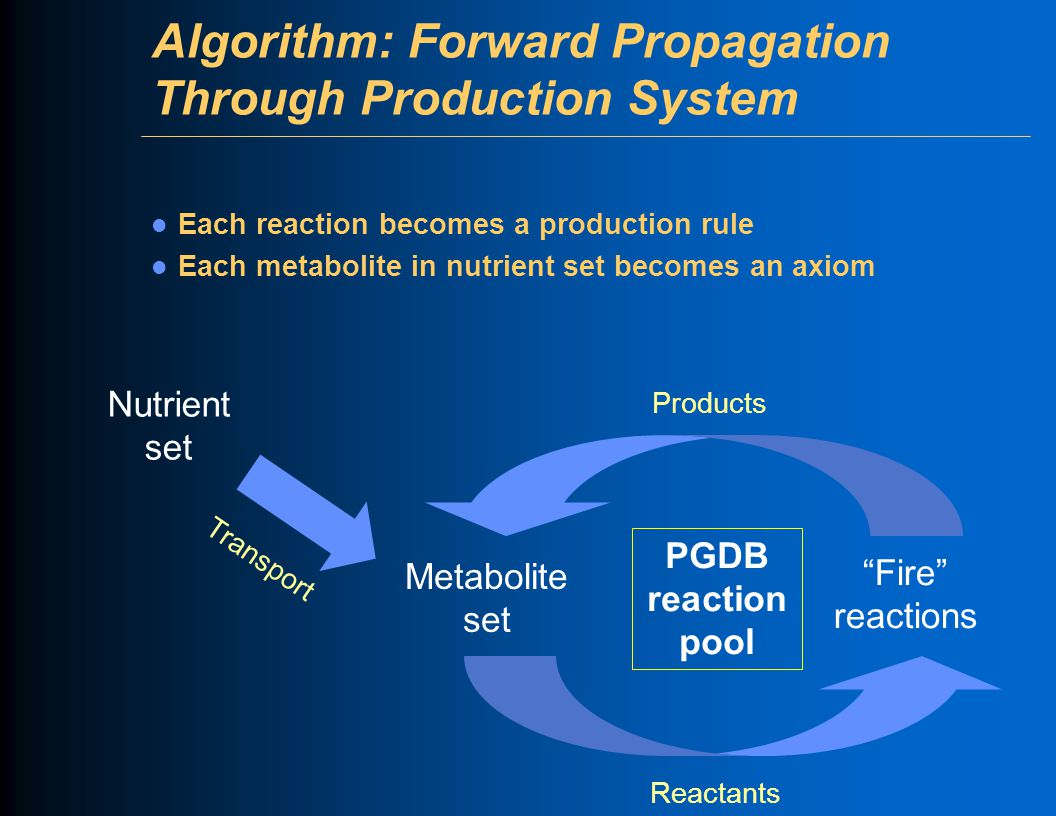 Algorithm: Forward Propagation Through Production System Each reaction becomes a production rule Each metabolite in nutrient set becomes an axiom Nutr