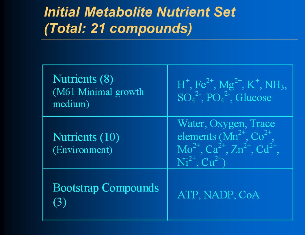 Initial Metabolite Nutrient Set (Total: 21 compounds)