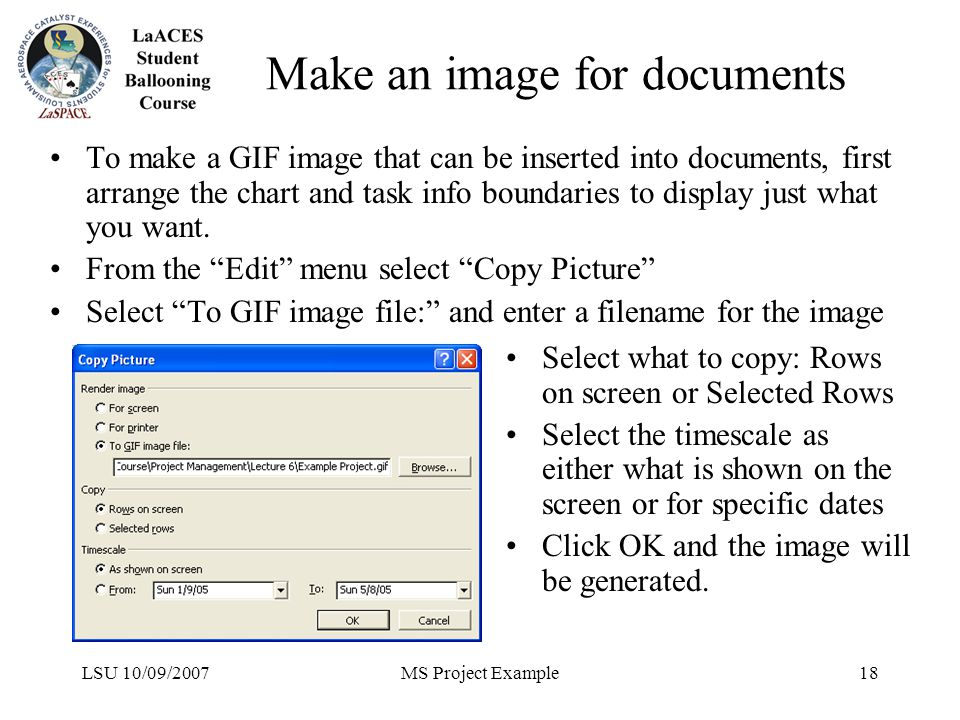 LSU 10/09/2007MS Project Example18 Make an image for documents To make a GIF image that can be inserted into documents, first arrange the chart and ta
