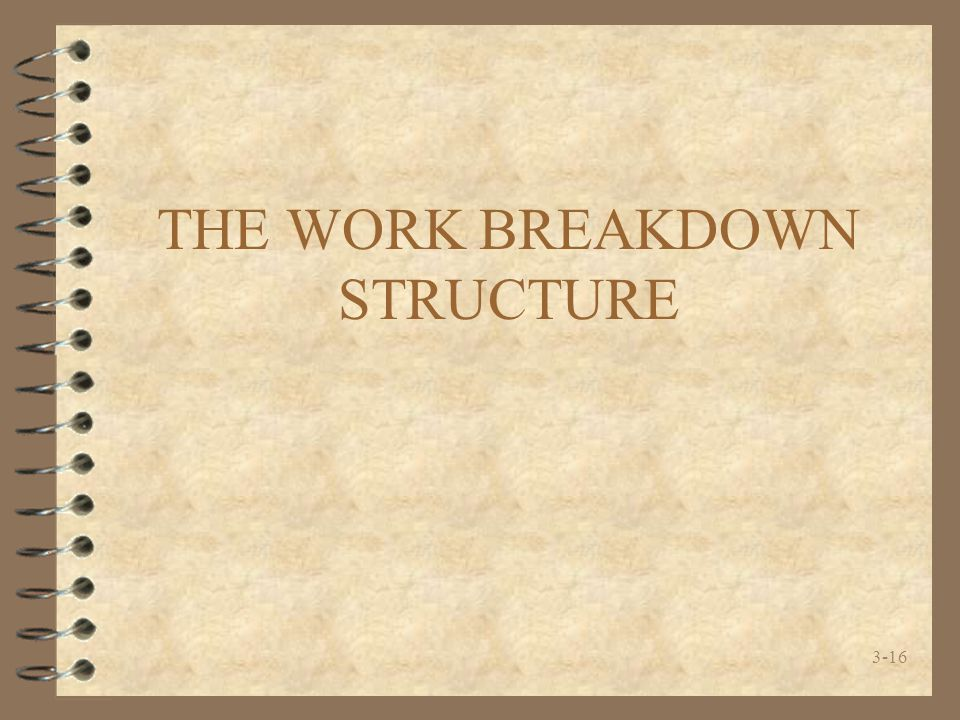3-16 THE WORK BREAKDOWN STRUCTURE