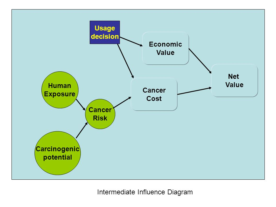 Economic Value Usage decision Cancer Cost Intermediate Influence Diagram Net Value Cancer Risk Human Exposure Carcinogenic potential