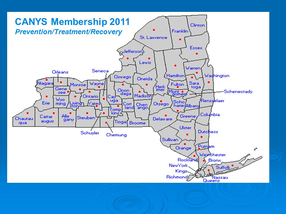 CANYS Membership 2011 Prevention/Treatment/Recovery