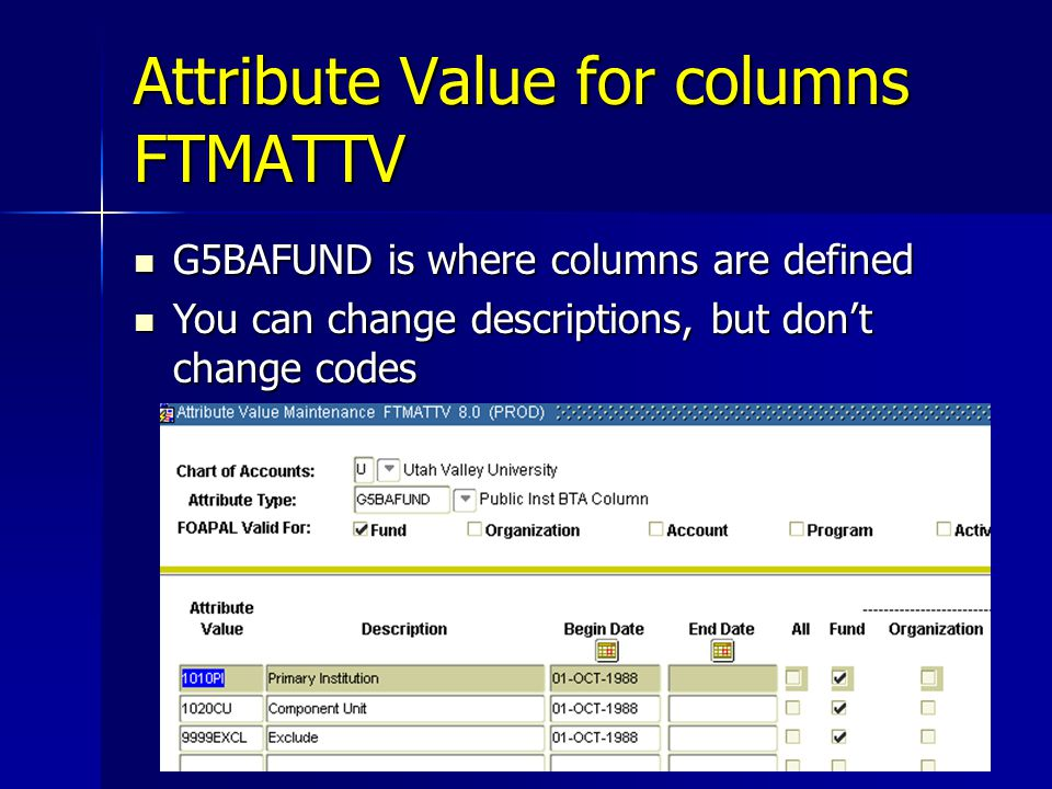 Attribute Value for columns FTMATTV G5BAFUND is where columns are defined G5BAFUND is where columns are defined You can change descriptions, but don't change codes You can change descriptions, but don't change codes