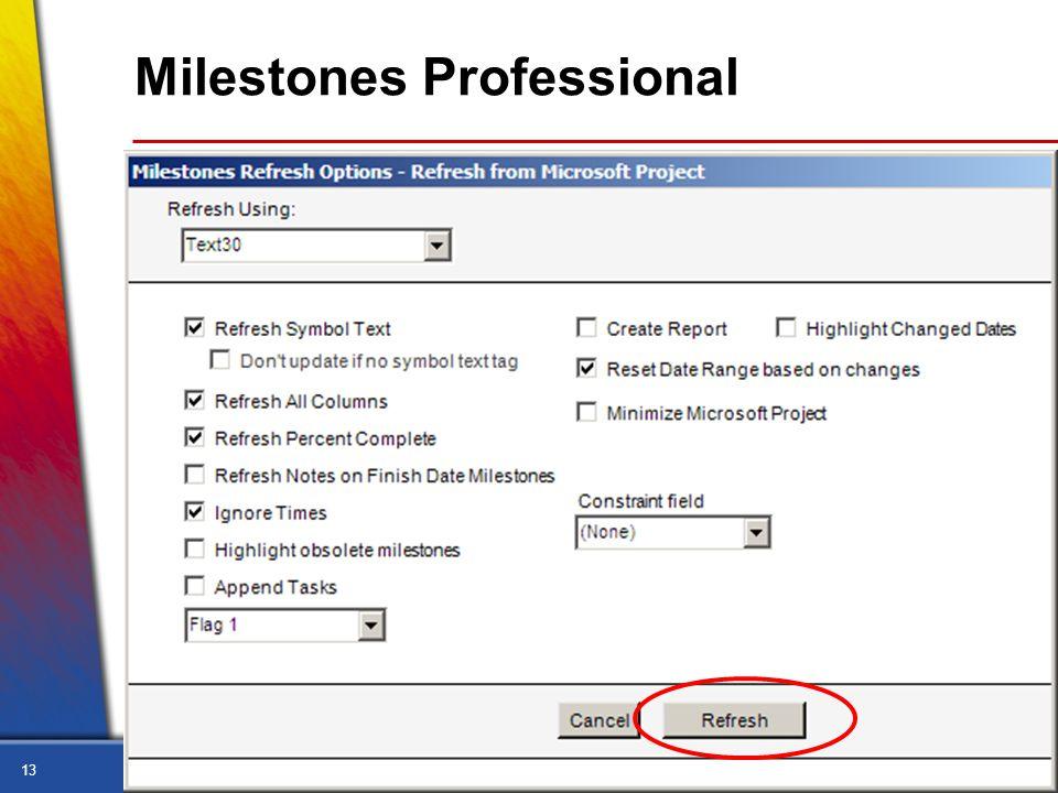 13 Milestones Professional