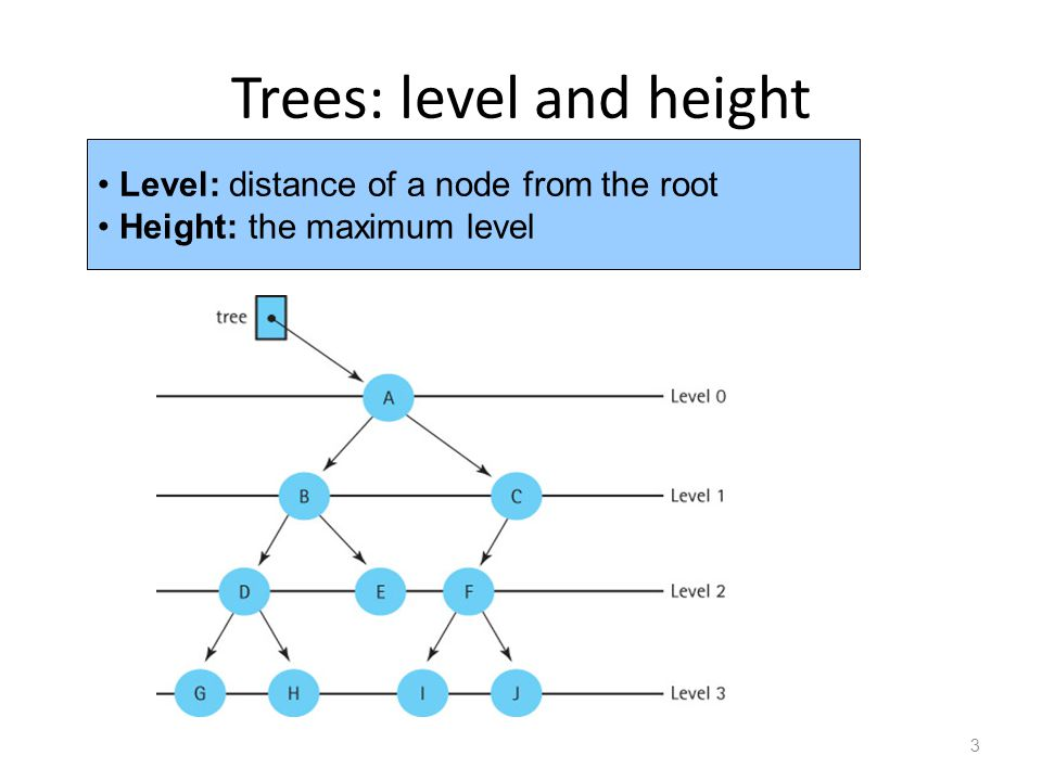 Trees: level and height 3 Level: distance of a node from the root Height: the maximum level