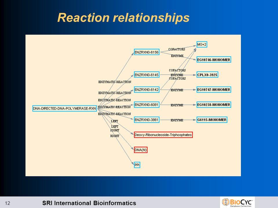 SRI International Bioinformatics 12 Reaction relationships
