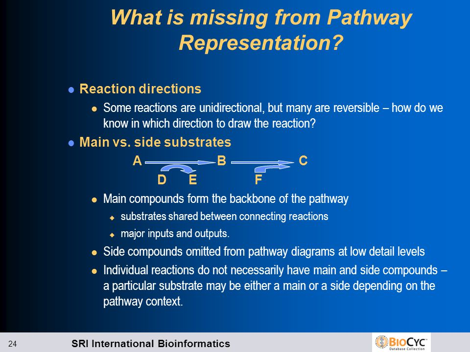 SRI International Bioinformatics 24 What is missing from Pathway Representation.