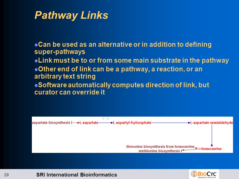 SRI International Bioinformatics 29 Pathway Links Can be used as an alternative or in addition to defining super-pathways Link must be to or from some main substrate in the pathway Other end of link can be a pathway, a reaction, or an arbitrary text string Software automatically computes direction of link, but curator can override it