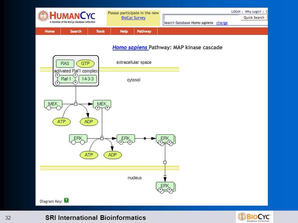 SRI International Bioinformatics 32