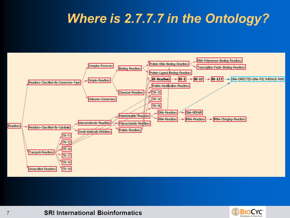 SRI International Bioinformatics 7 Where is 2.7.7.7 in the Ontology?