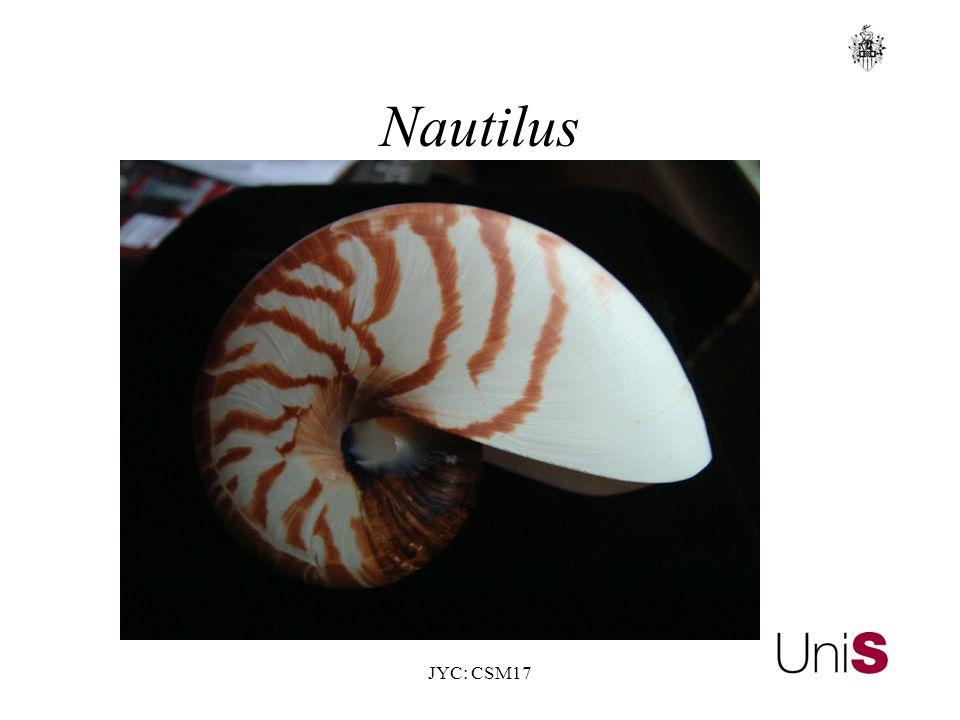 JYC: CSM17 Nautilus