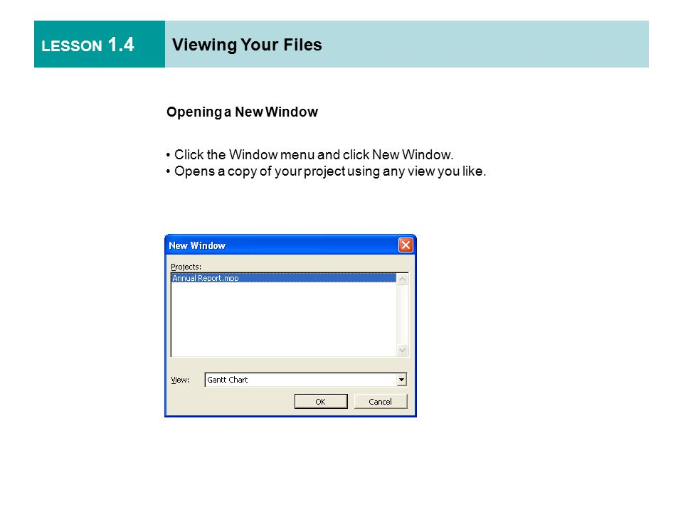 LESSON 1.4 Viewing Your Files Opening a New Window Click the Window menu and click New Window.