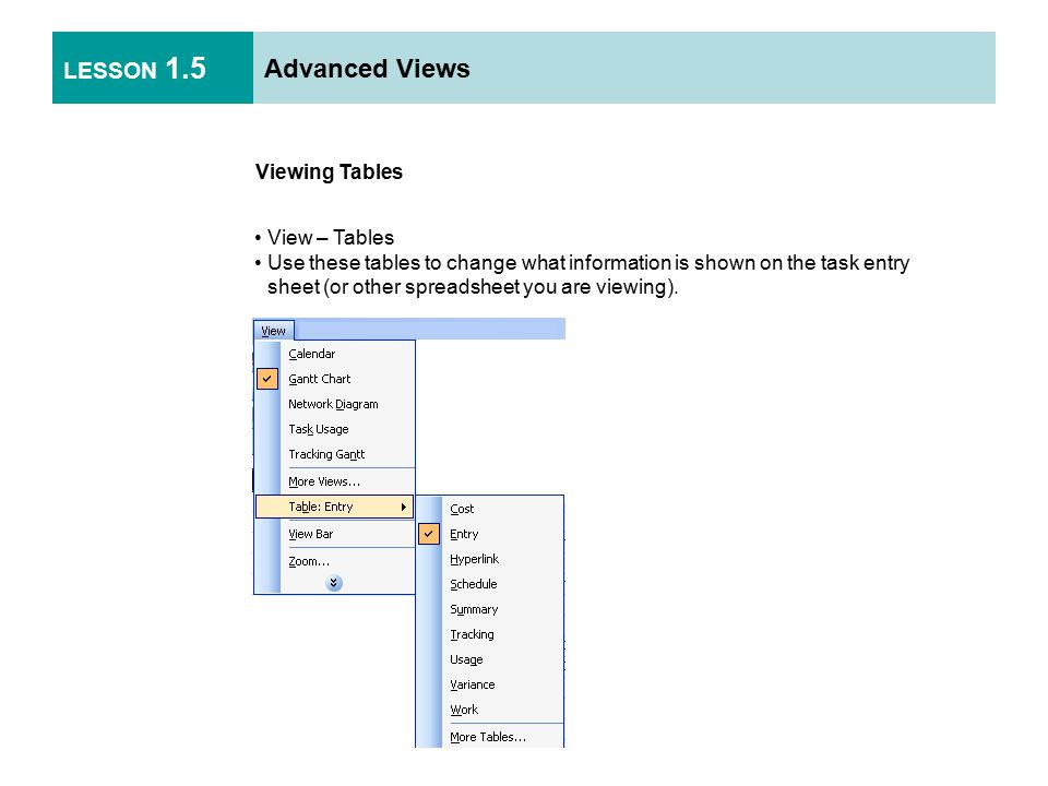LESSON 1.5 Advanced Views Viewing Tables View – Tables Use these tables to change what information is shown on the task entry sheet (or other spreadsheet you are viewing).