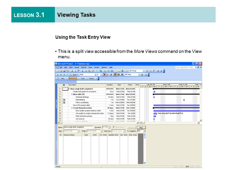 LESSON 3.1 Viewing Tasks Using the Task Entry View This is a split view accessible from the More Views command on the View menu.