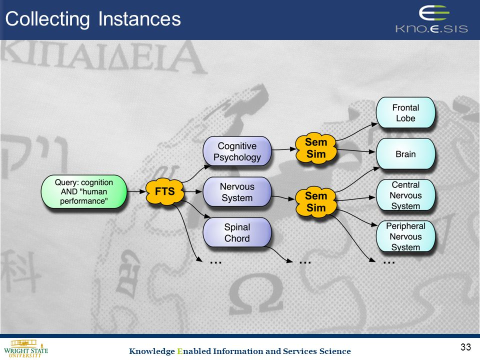 Knowledge Enabled Information and Services Science 33 Collecting Instances
