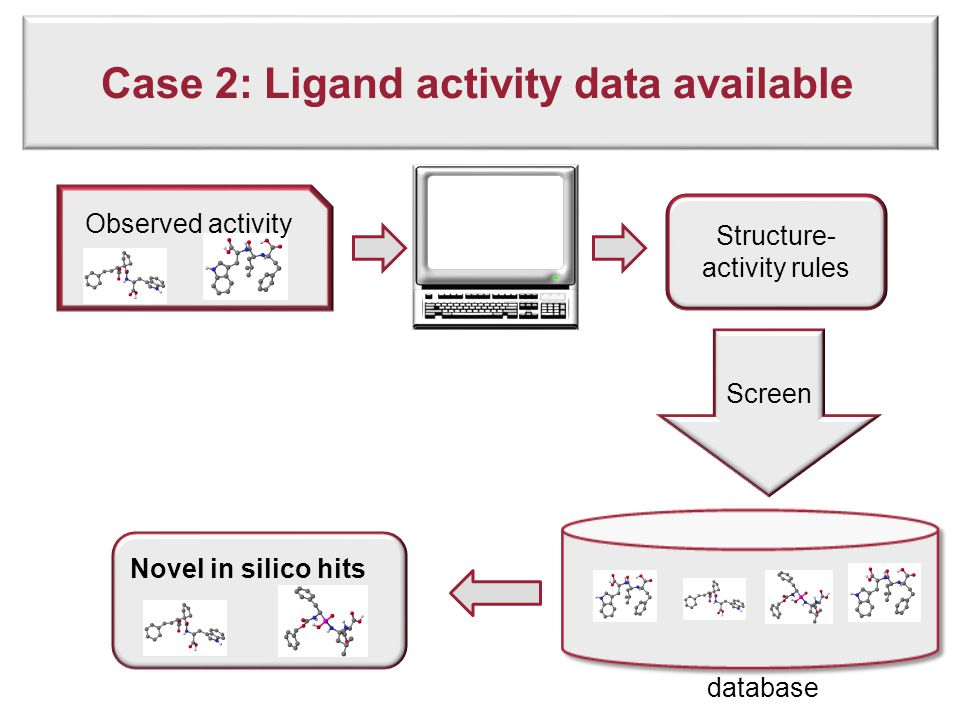 Case 2: Ligand activity data available Novel in silico hits database Observed activity Structure- activity rules Screen
